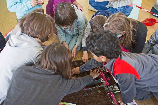 progetto-bambini-educazione-commestibile